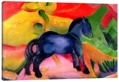 Little Blue Horse, 1912  Canvas Art Print