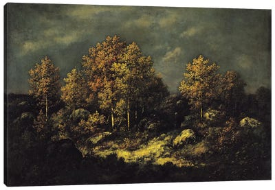 The Jean de Paris Heights in the Forest of Fontainebleau, 1867  Canvas Art Print