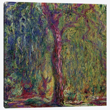 Weeping Willow, 1918-19  Canvas Print #BMN1305} by Claude Monet Canvas Art