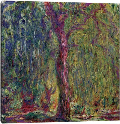 Weeping Willow, 1918-19  Canvas Art Print