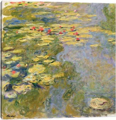 The Waterlily Pond, 1917-19   Canvas Art Print