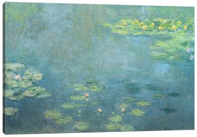 Waterlilies Canvas Print #BMN1310