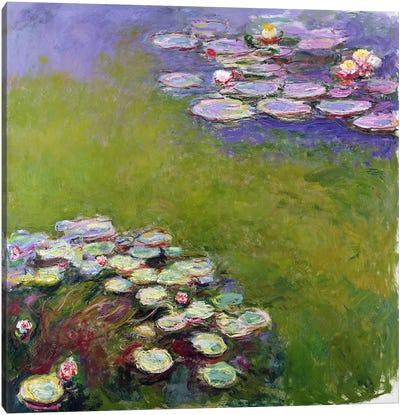 Waterlilies, 1914-17  Canvas Print #BMN1323