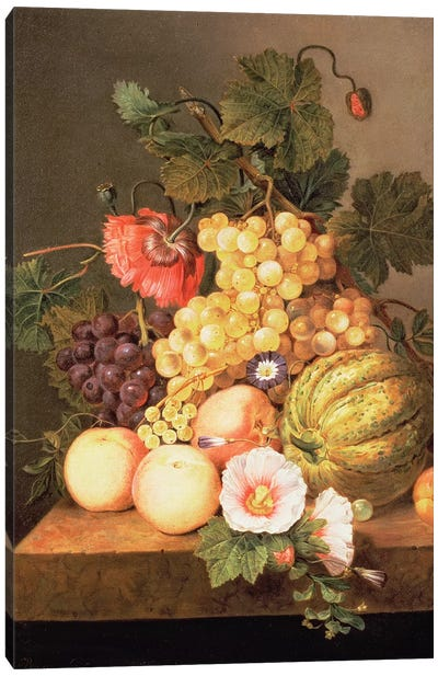 Still life with fruit Canvas Art Print