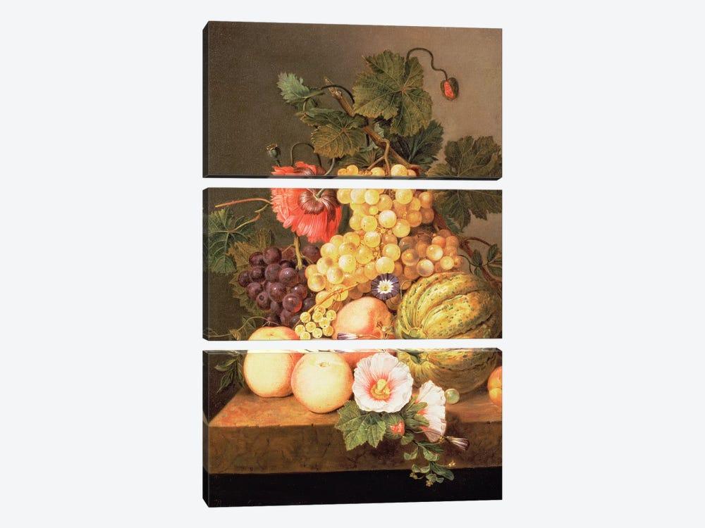 Still life with fruit by Johannes Cornelis Bruyn 3-piece Canvas Wall Art