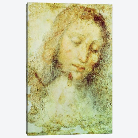 Head of Christ (Pinacoteca di Brera) Canvas Print #BMN1382} by Leonardo da Vinci Canvas Print