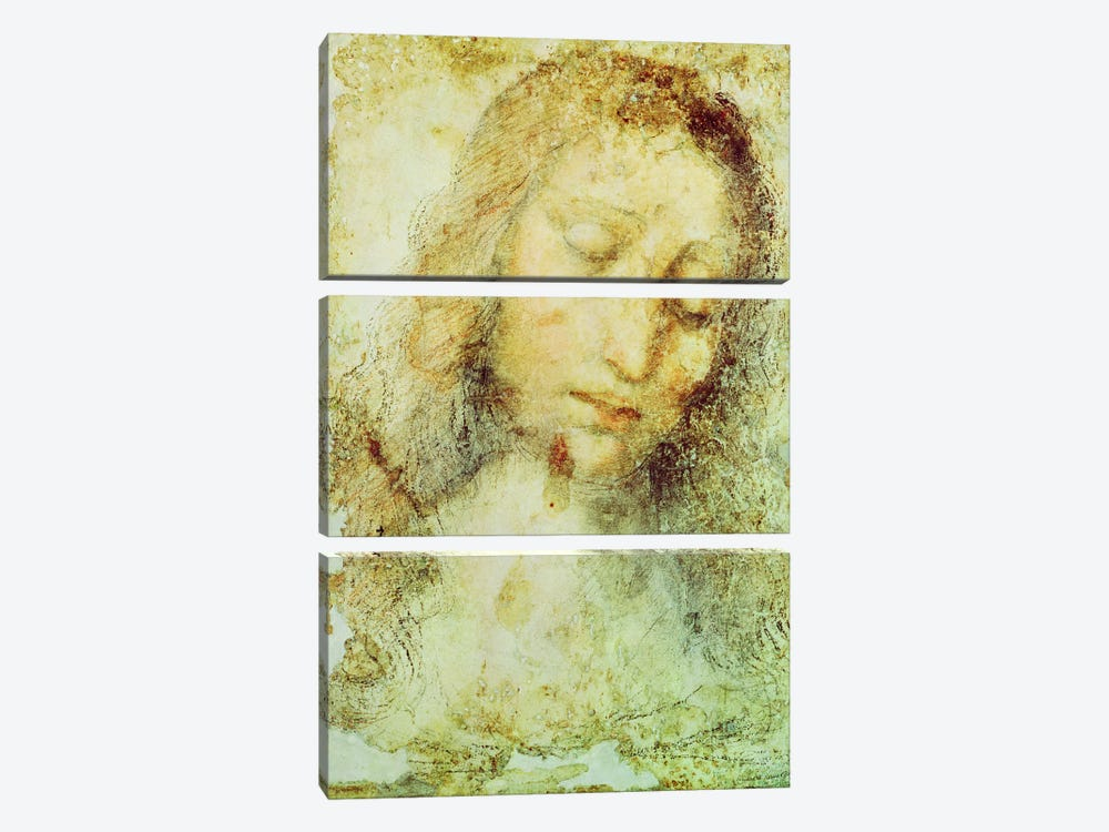 Head of Christ (Pinacoteca di Brera) by Leonardo da Vinci 3-piece Canvas Print