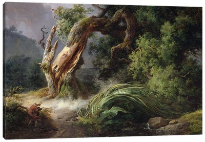 The Oak and the Reed, 1816  Canvas Art Print