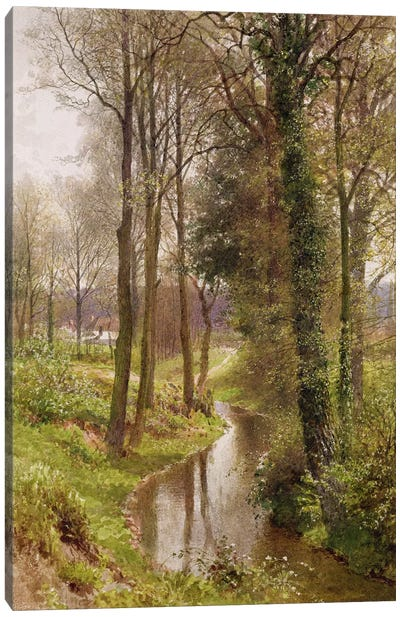 Round My House: The Mill Stream, Ockham, 1880-86  Canvas Art Print