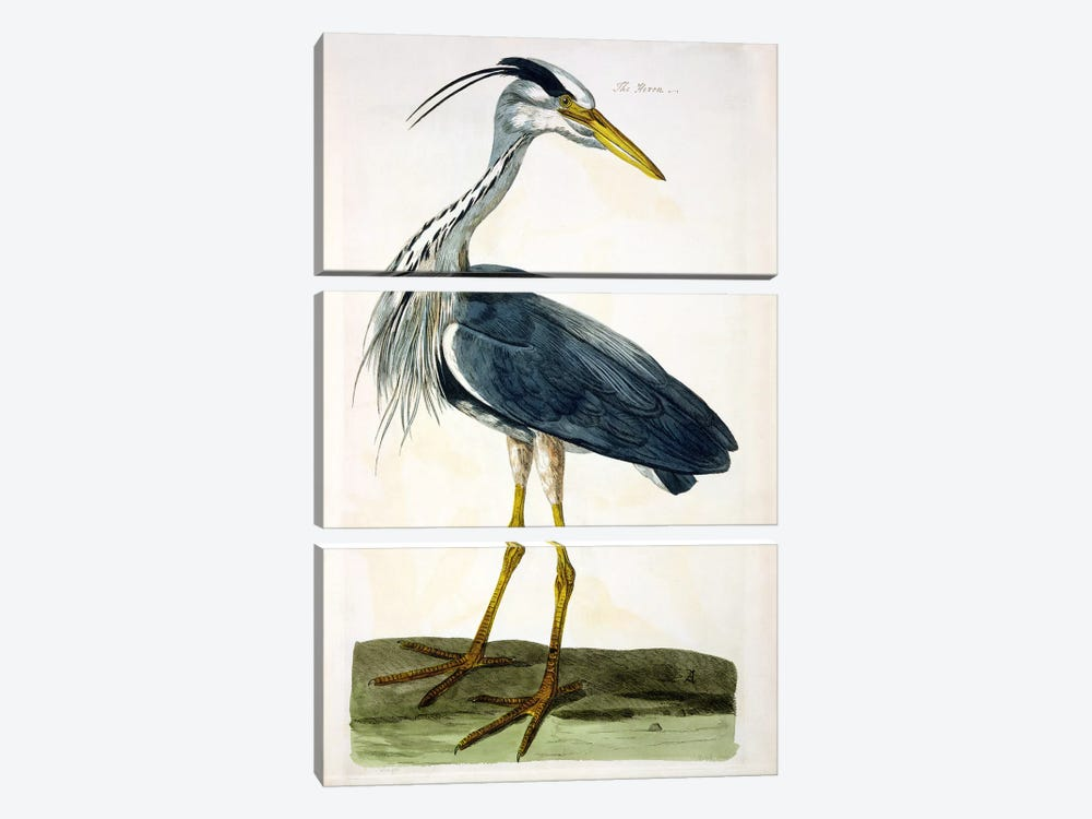 The Heron  by Peter Paillou 3-piece Canvas Artwork
