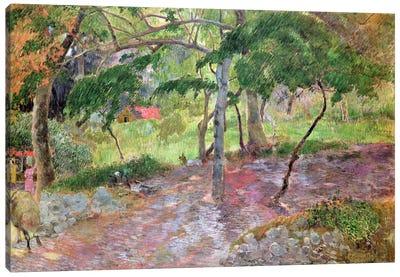 Tropical Landscape, Martinique, 1887  Canvas Print #BMN1443