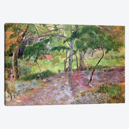 Tropical Landscape, Martinique, 1887  Canvas Print #BMN1443} by Paul Gauguin Canvas Art