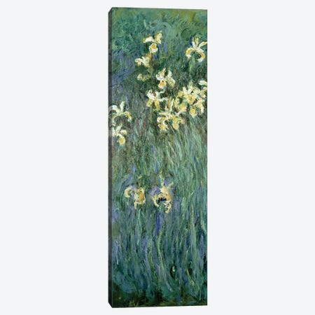 The Yellow Irises  Canvas Print #BMN1507} by Claude Monet Canvas Artwork