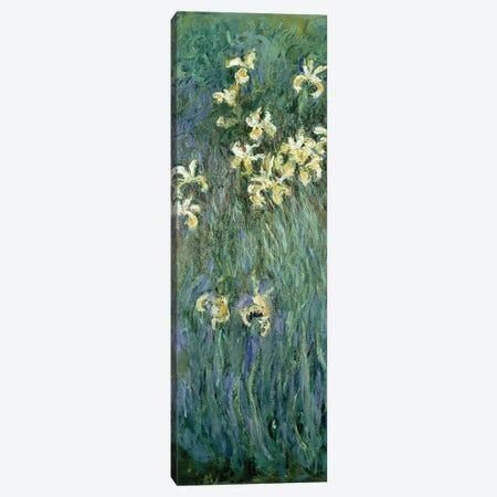 The Yellow Irises  Canvas Print #BMN1507} by Claude Monet Canvas Artwork