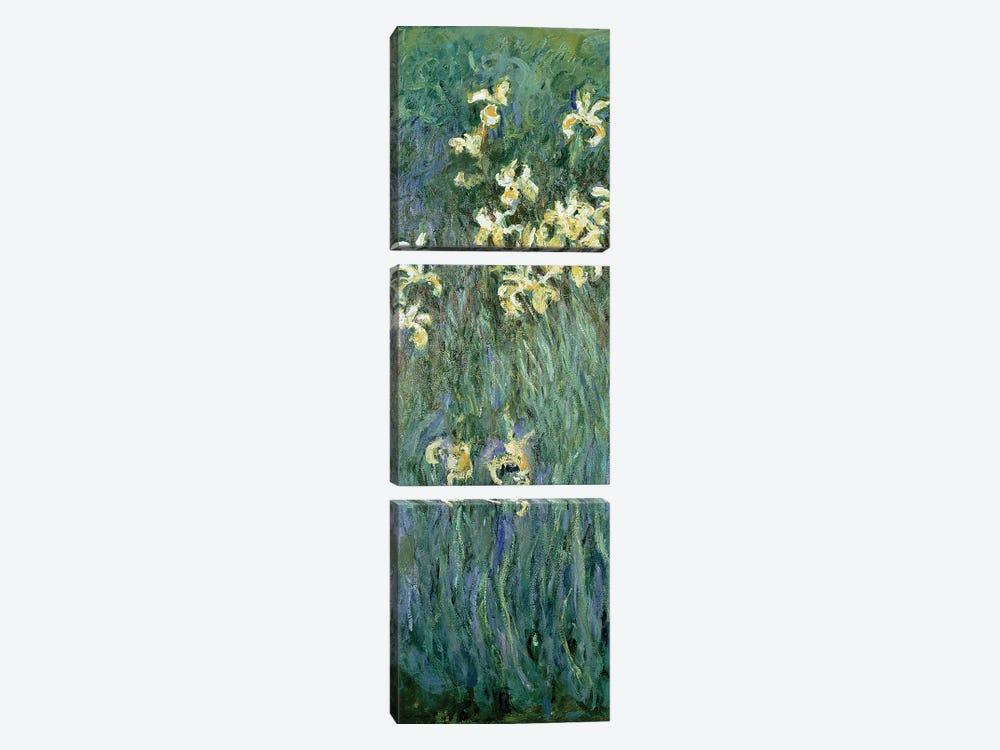 The Yellow Irises  by Claude Monet 3-piece Canvas Artwork