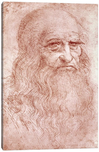 Portrait of a Bearded Man, possibly a Self Portrait, c.1513 Canvas Art Print