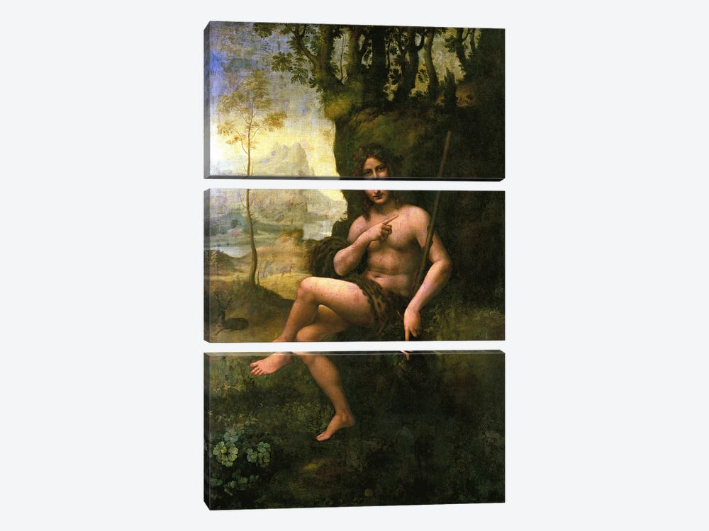 Bacchus, c.1695  by Leonardo da Vinci 3-piece Canvas Artwork