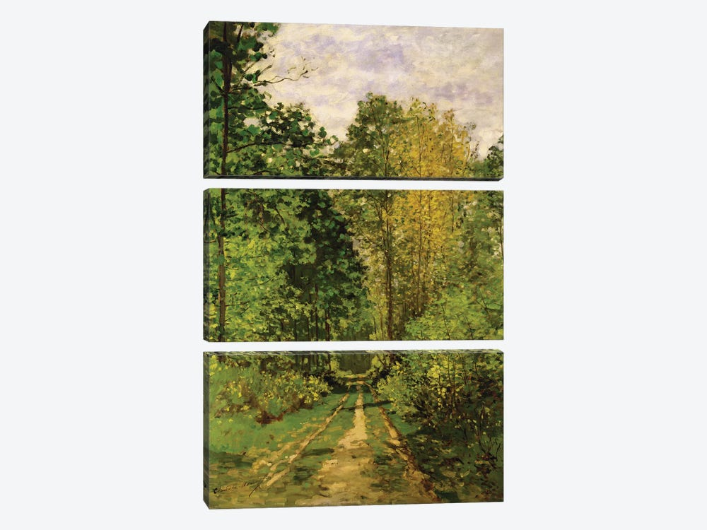 Wooded Path, 1865  by Claude Monet 3-piece Canvas Wall Art