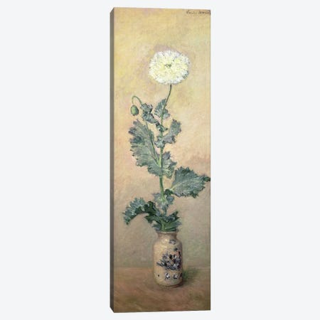 White Poppy, 1883  Canvas Print #BMN1594} by Claude Monet Canvas Art Print