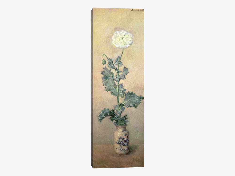 White Poppy, 1883  by Claude Monet 1-piece Canvas Artwork