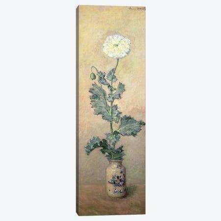 White Poppy, 1883  Canvas Print #BMN1594} by Claude Monet Canvas Art Print