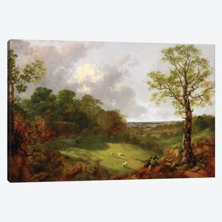 Wooded Landscape with a Cottage, Sheep and a Reclining Shepherd, c.1748-50  Canvas Print #BMN1605} by Thomas Gainsborough Canvas Print
