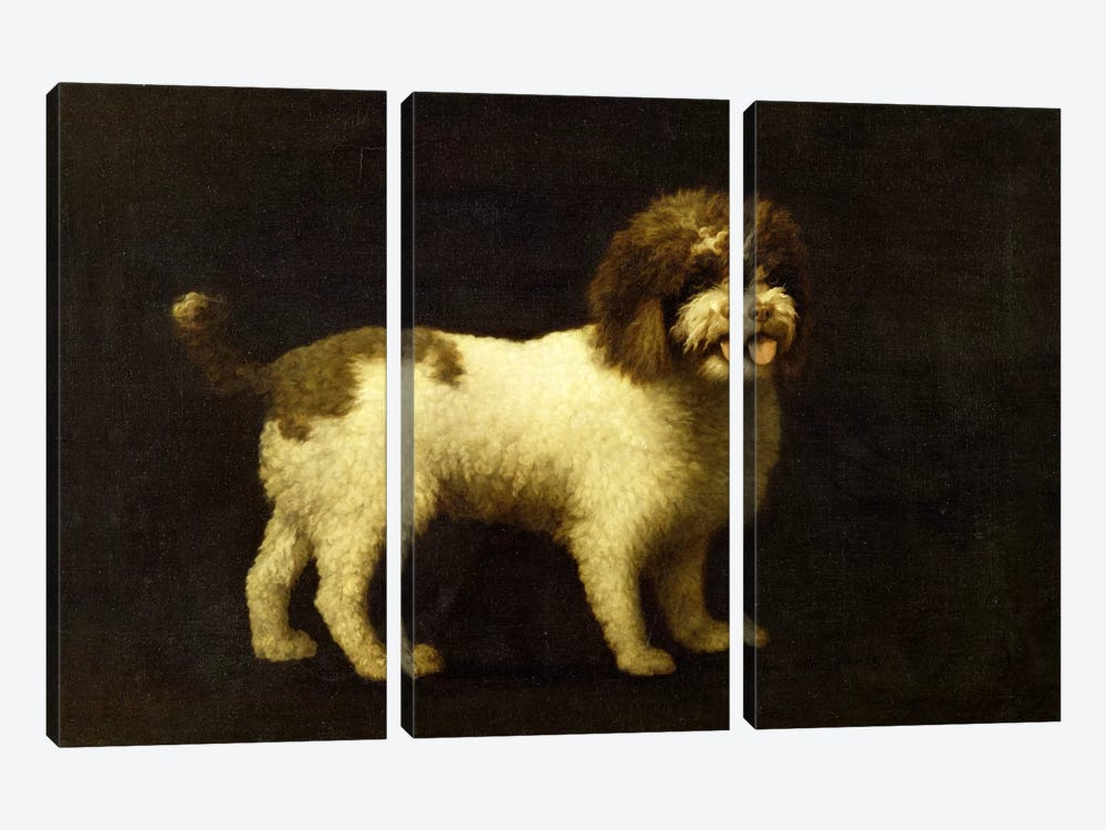 A Water Spaniel, 1769  by George Stubbs 3-piece Canvas Artwork