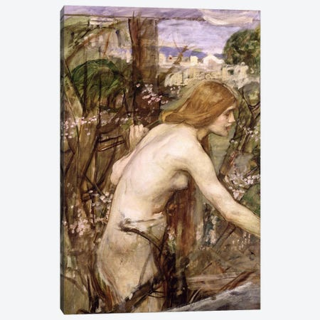 The Flower Picker  Canvas Print #BMN1684} by John William Waterhouse Canvas Print