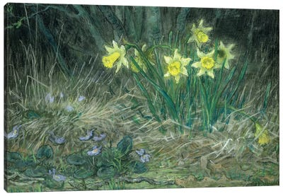 Narcissi and Violets, c.1867  Canvas Art Print