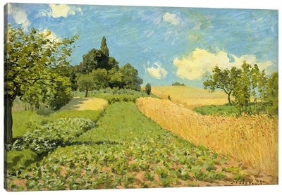 The Cornfield Canvas Art Print