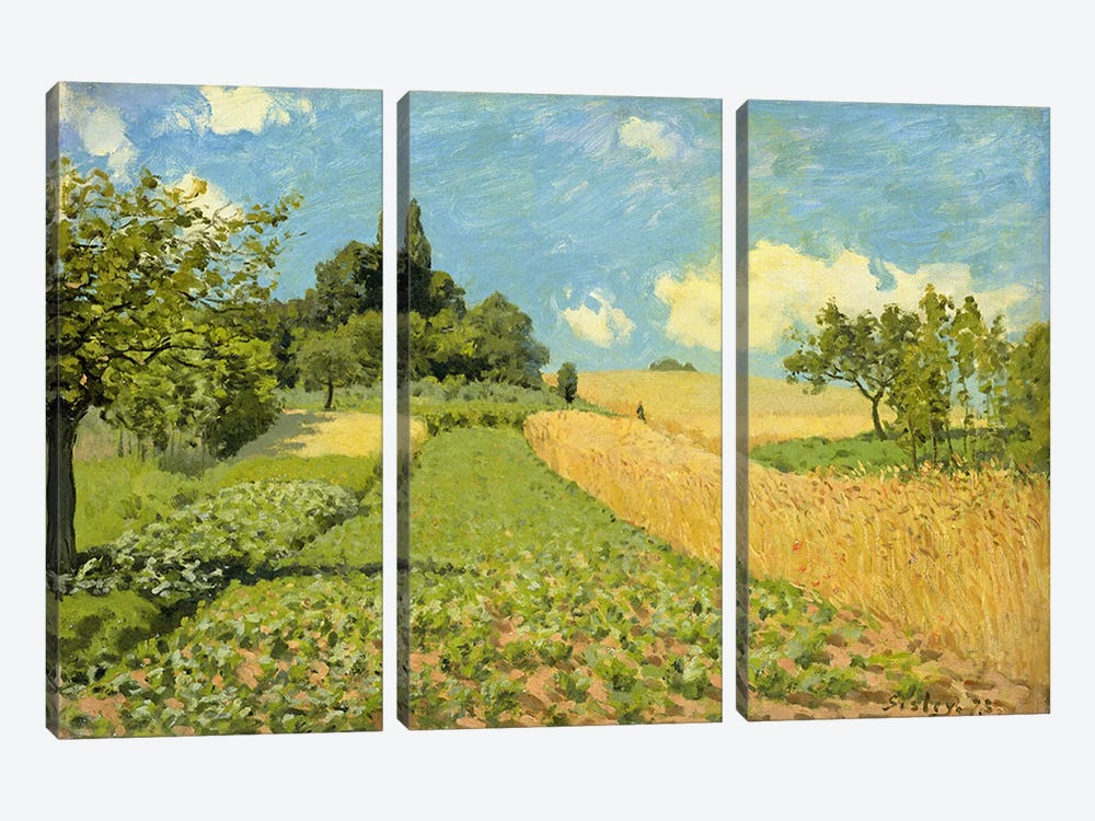 The Cornfield  by Alfred Sisley 3-piece Canvas Print