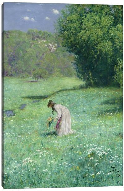 Woodland Meadow, 1876  Canvas Art Print