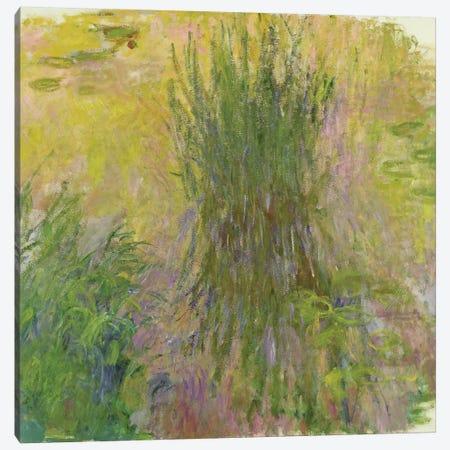 Waterlilies   Canvas Print #BMN1987} by Claude Monet Canvas Wall Art