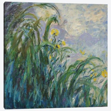 The Yellow Iris  Canvas Print #BMN1997} by Claude Monet Art Print