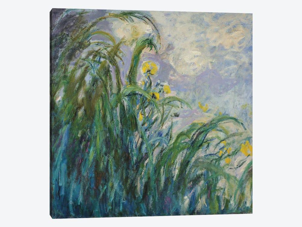 The Yellow Iris  by Claude Monet 1-piece Art Print