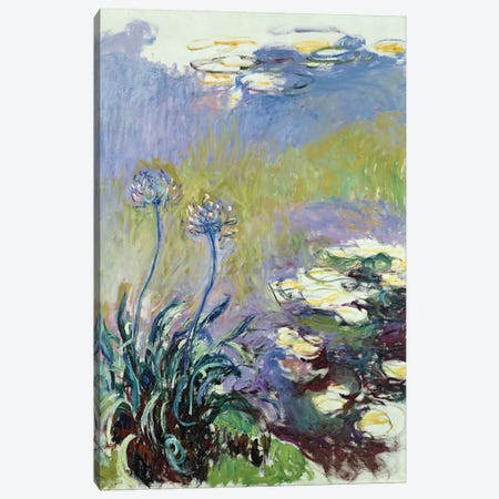 The Agapanthus, 1914-17  Canvas Print #BMN1999} by Claude Monet Canvas Wall Art