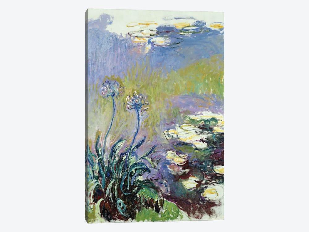 The Agapanthus, 1914-17  by Claude Monet 1-piece Art Print