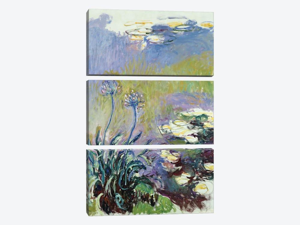 The Agapanthus, 1914-17  by Claude Monet 3-piece Canvas Art Print