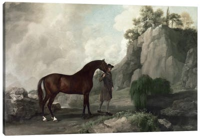 Cato' and Groom  Canvas Art Print