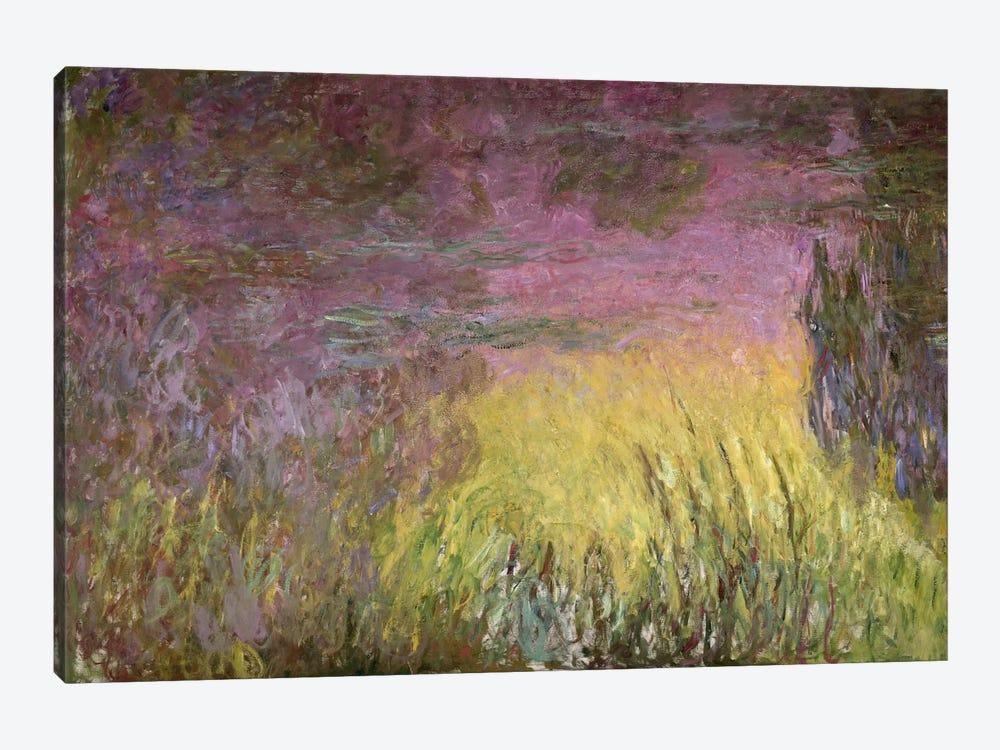 Waterlilies at Sunset, 1915-26   by Claude Monet 1-piece Canvas Art Print