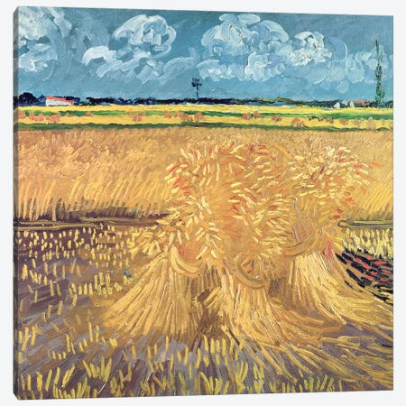 Wheatfield with Sheaves, 1888  Canvas Print #BMN2031} by Vincent van Gogh Art Print