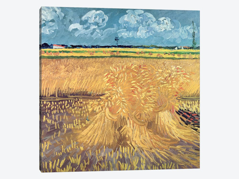 Wheatfield with Sheaves, 1888  by Vincent van Gogh 1-piece Art Print