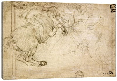 A Horseman in Combat with a Griffin, 16th century by Leonardo da Vinci Canvas Artwork
