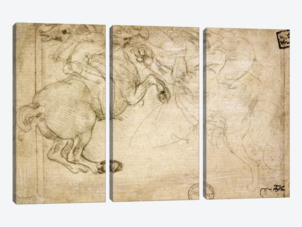 A Horseman in Combat with a Griffin, 16th century by Leonardo da Vinci 3-piece Canvas Art Print