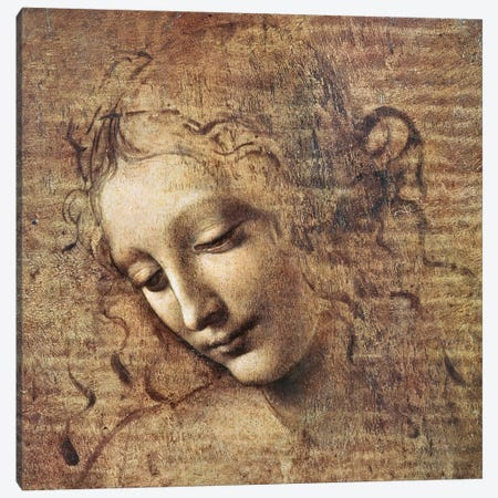 Head of a Young Woman with Tousled Hair or, Leda  Canvas Print #BMN2045} by Leonardo da Vinci Canvas Art Print