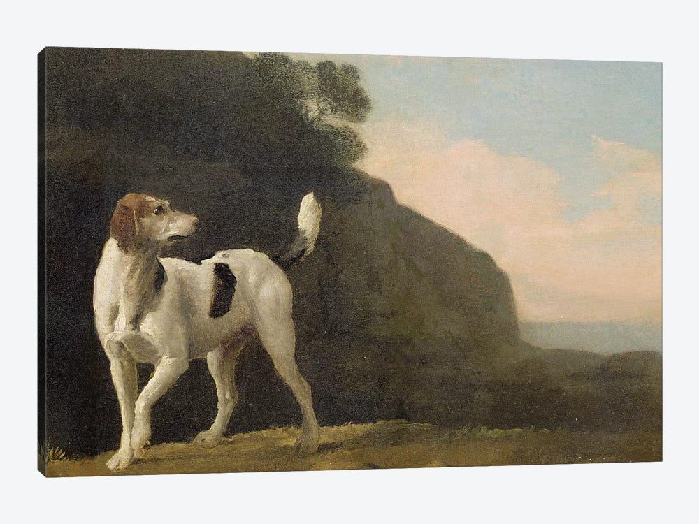 A Foxhound, c.1760  by George Stubbs 1-piece Canvas Wall Art