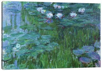 Waterlilies, 1914-17  Canvas Art Print
