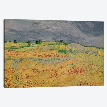 Plain at Auvers, 1890  Canvas Print #BMN2101} by Vincent van Gogh Canvas Print