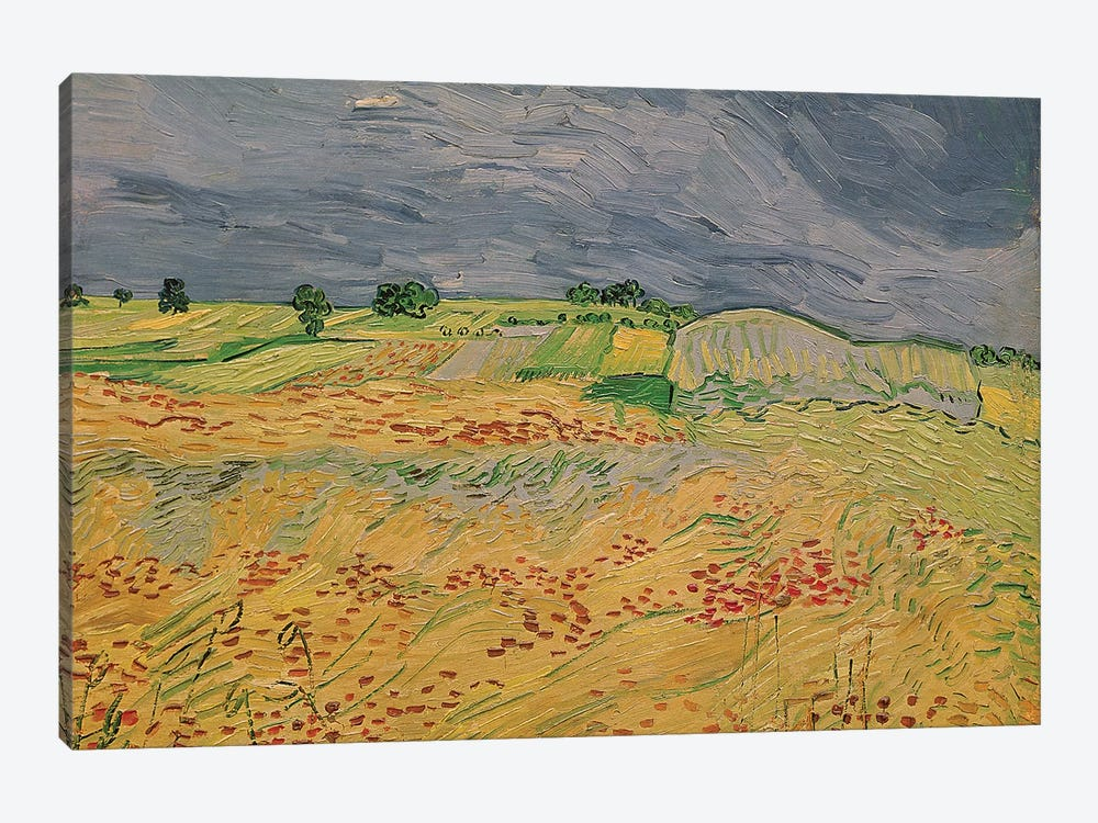 Plain at Auvers, 1890  by Vincent van Gogh 1-piece Canvas Art Print
