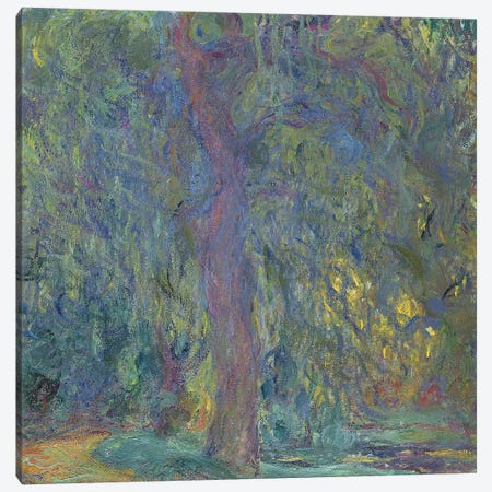 Weeping Willow, 1918-19  Canvas Print #BMN2108} by Claude Monet Art Print